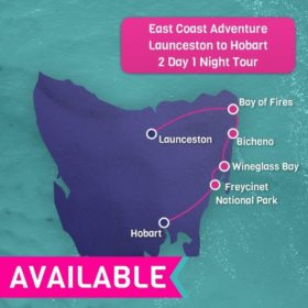 East Coast Adventure 2 Day/1 Night Tour Launceston to Hobart