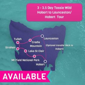 Tassie Wild 3 Day trip - Hobart To Launceston