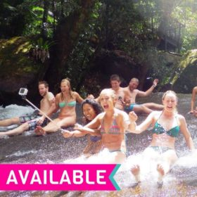 Fun Falls and Forest Day Trip - UBFFF