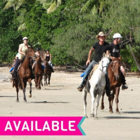Cape Tribulation Horse Ride