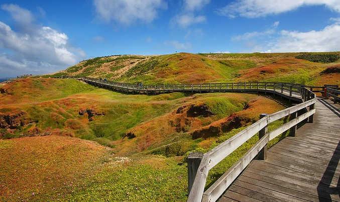 Phillip Island Walk Boards