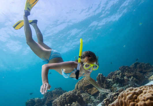 Great Barrier Reef Tours