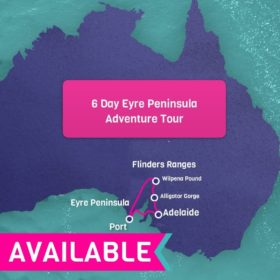 6 Day Eyre Peninsula & Flinders Ranges Tour