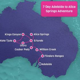 7 Day Adelaide to Alice Springs Adventure