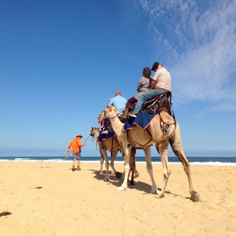 camel ride lakes entrance