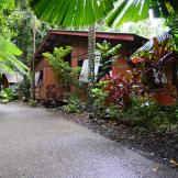 CApe Tribulation Beach House Accommodation