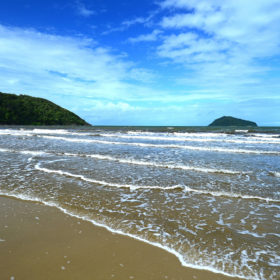 Cape Tribulation Tour and Stay 2 days 1 night