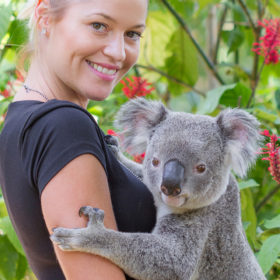 Gold Coast Currumbin Package - 2 nights plus entry and transfers for Currumbin wildlife sanctuary