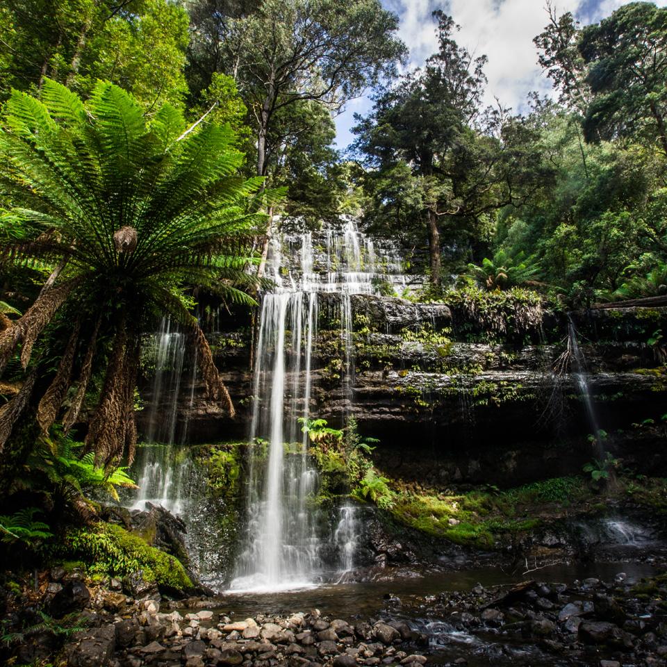 Gorgeous nature in Tasmania
