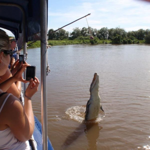 1 Day Litchfield and Jumping Croc Cruise