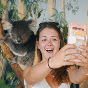 Melbourne Arrival Package 8 Day Koala Selfie