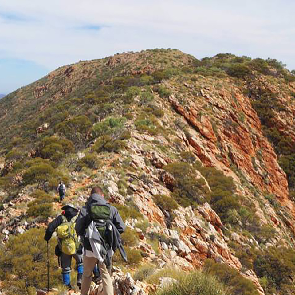 alice springs tour larapinta trail