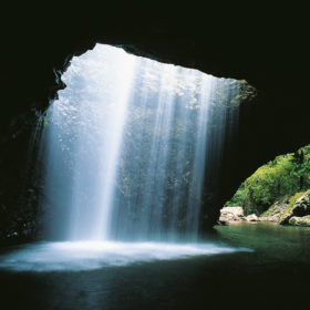 Springbrook National Park and Natural Arch Half Day Tour