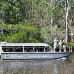 Noosa Everglades 1 Day River Eco Cruise