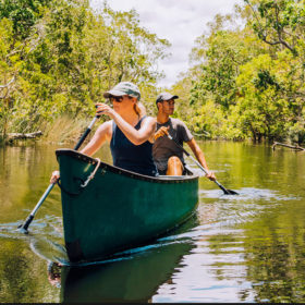 Noosa Everglades 1 day River Cruise-Canoe