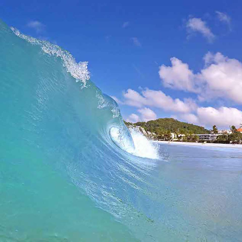 waves noosa beach