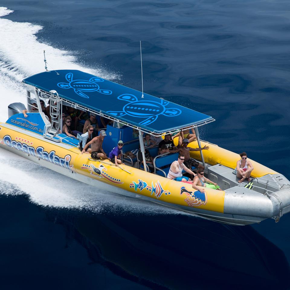 Ocean Safari