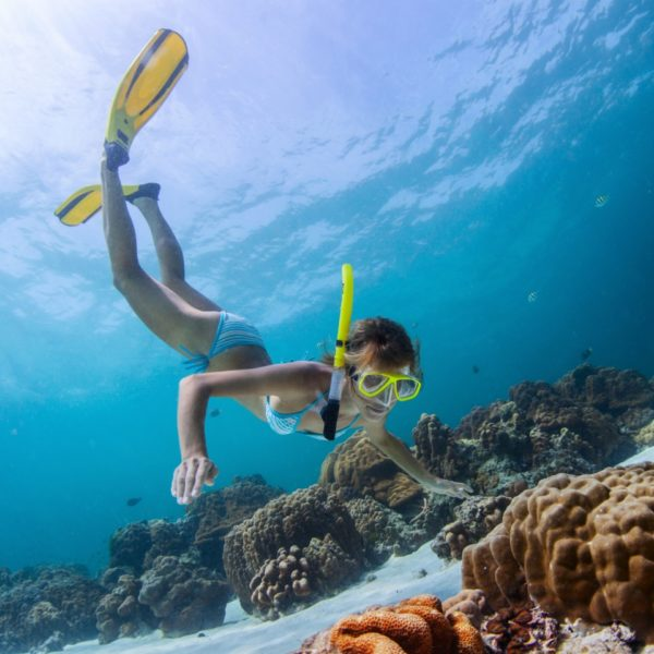 Cairns reef and waterfalls package deal with 3 nights - Best place to dive the great barrier reef ...