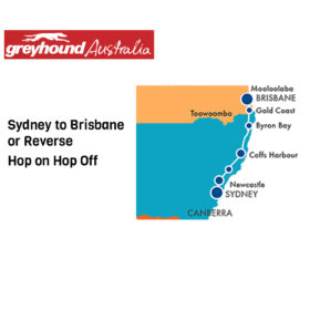 Greyhound Sydney to Brisbane Hop-on Hop-off Bus Pass
