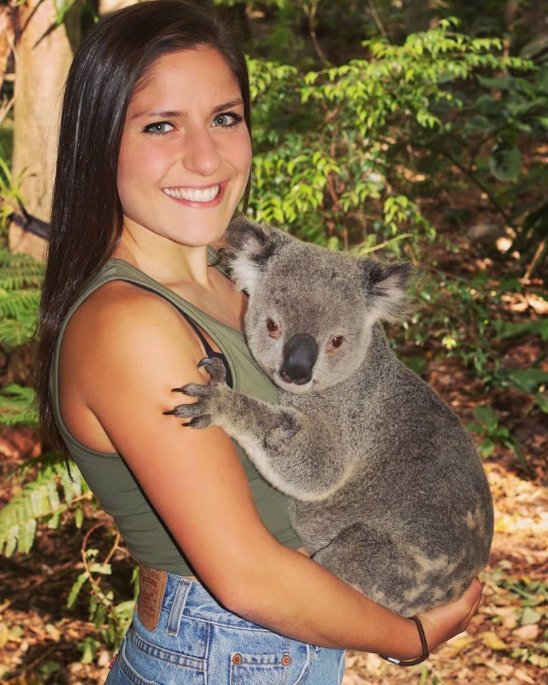 East Coast Koala Cuddle
