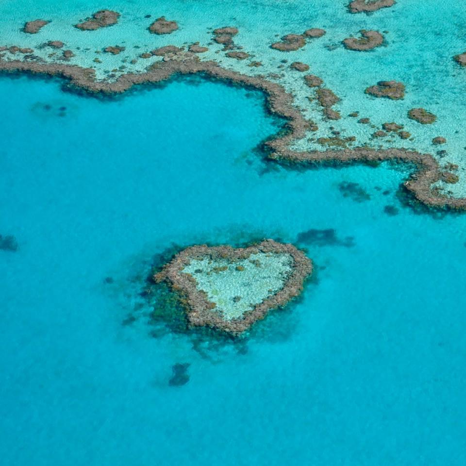 Whitsundays Heart Reef