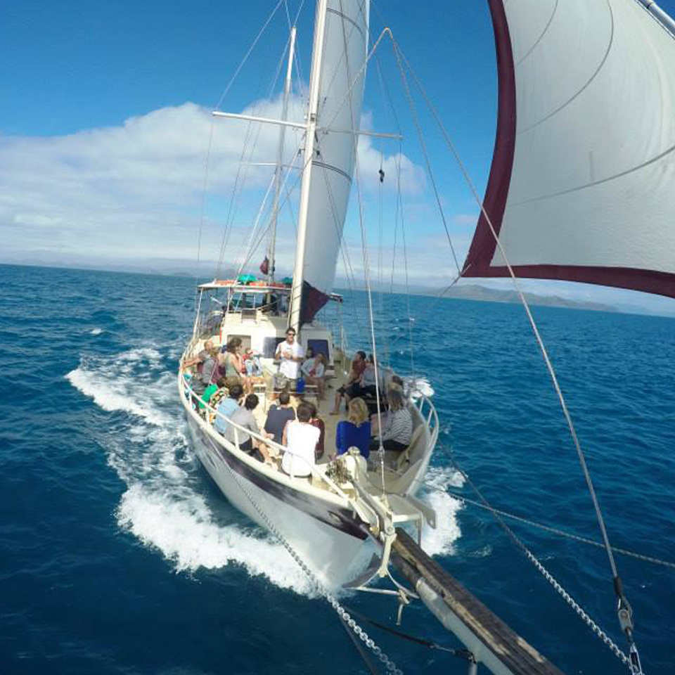 The Whitsundays Sail Boat