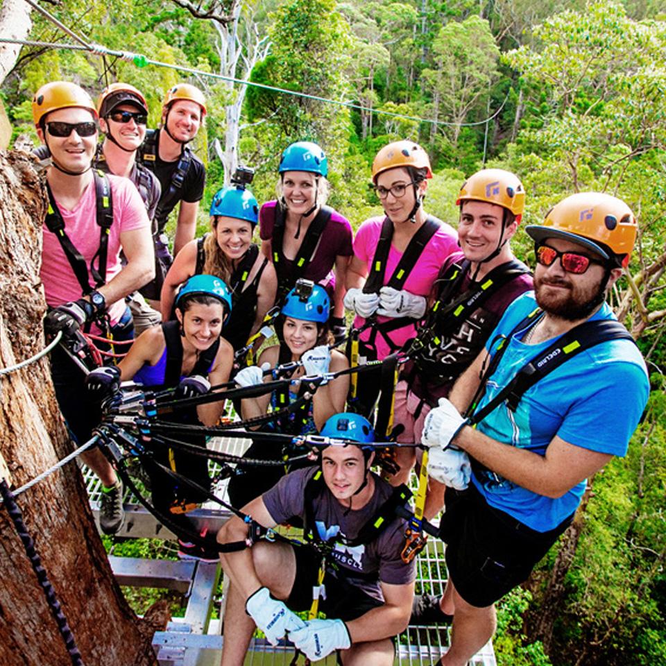 Treetop Challenge Canyon Flyer