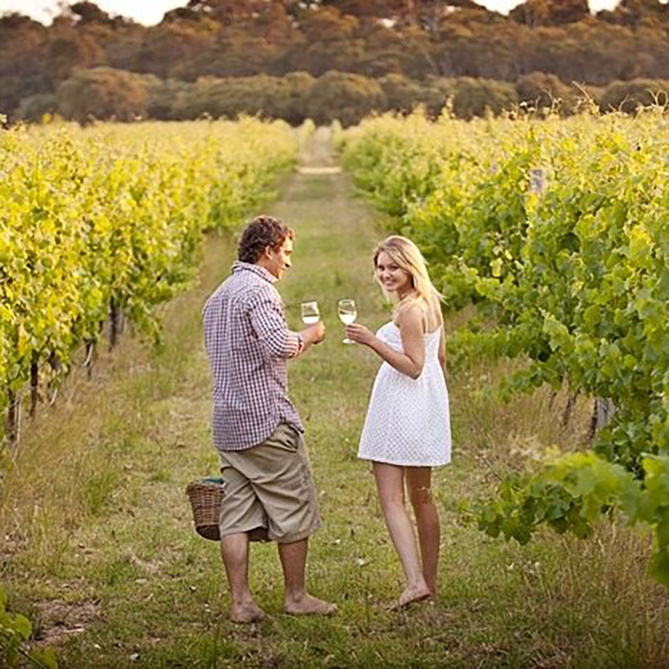 yarra valley winery tours couple