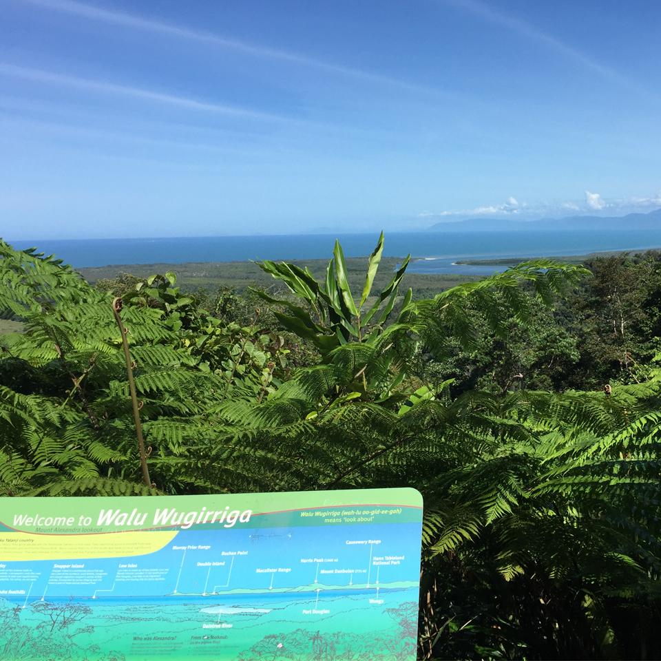 Lookout Cape Tribulation