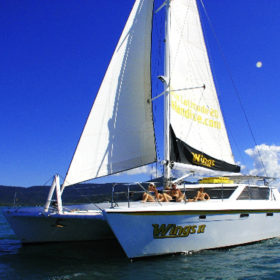 Wings 3 Catamaran