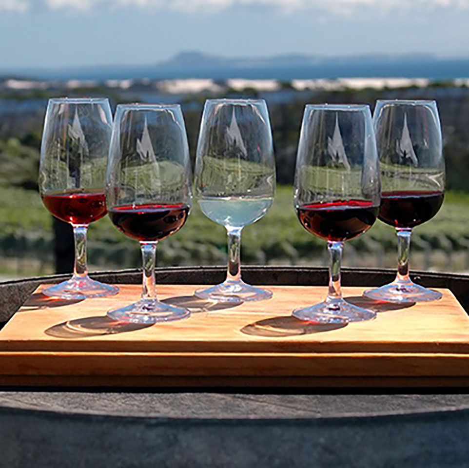 wine tasting tour barossa valley