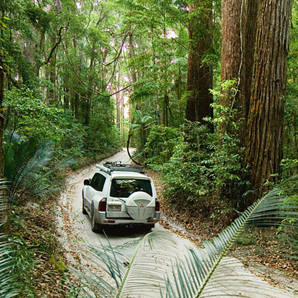 Fraser Island Australia: Sydney To Cairns ULTIMATE East Coast Australia Tour Package
