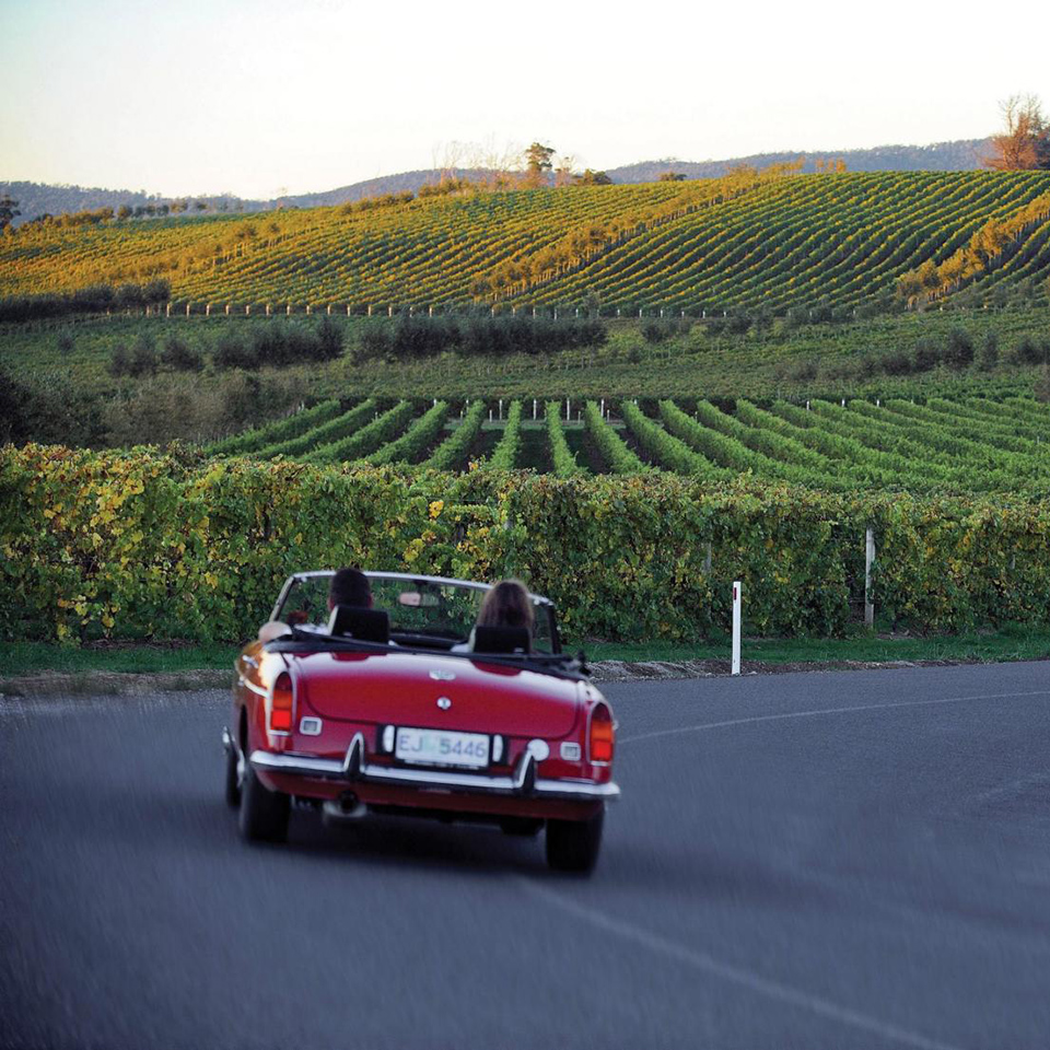 car australian winery tours