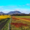 Stirling Ranges WA