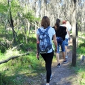 Warren Gorge walk