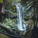 3 - Day Tasmania Tour - Russell Falls