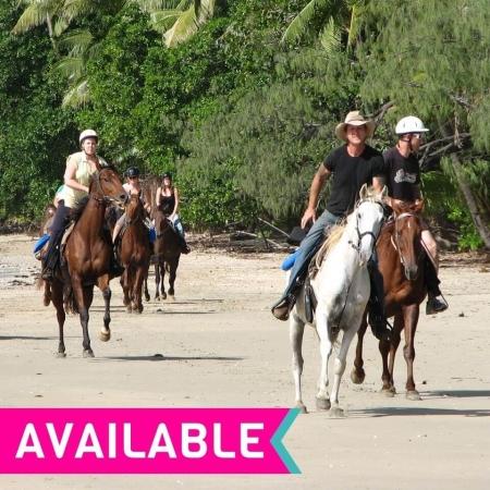 cape-tribulation-horse-ride