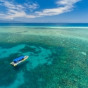 Half-day Great Barrier Reef Tour - boat