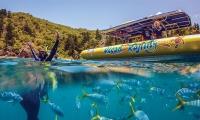 Fish Ocean Rafting Whitsundays