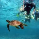 Coral Bay Ningaloo Reef