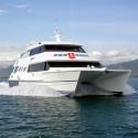 Great Barrier Reef Snorkel Trip