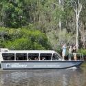 1 Day Cruise Noosa Everglades