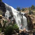 1 Day Grampians tour - MacKenzie Falls