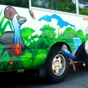Cassowary checking out the bus