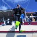 Diving on the Whitsundays