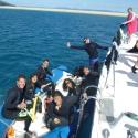 Snorkel the Whitsundays