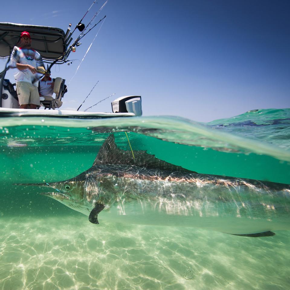 fraser island fishing tours