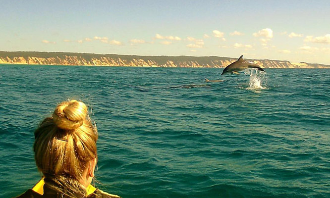 Dolphins Kayak Double Island Point