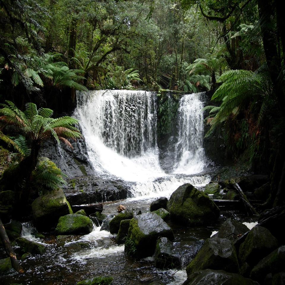 One stop adventures visit tasmania horseshoe falls