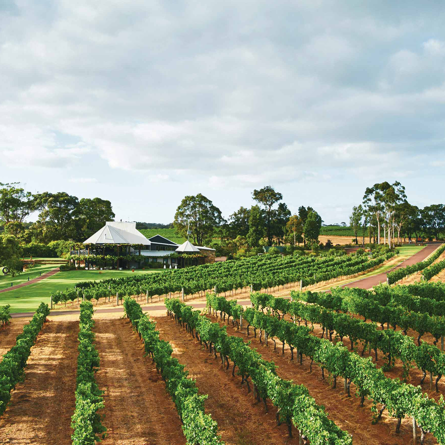 australian wine tours margaret river